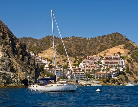 Catalina island vacation rentals avalon and hamilton for Catalina island fishing charters